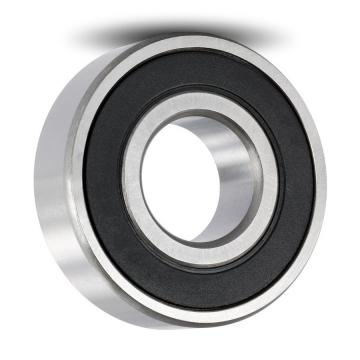 6202 High Temperature High Speed Hybrid Ceramic Ball Bearing